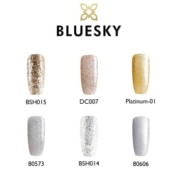 bluesky silver/gold gift set 10